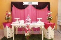 aniversario-18-anos-pink-01