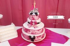aniversario-18-anos-pink-02