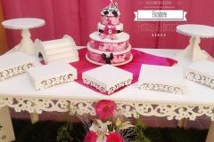 aniversario-18-anos-pink-03