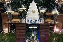 casamento-elizabete-festas-rustico-02