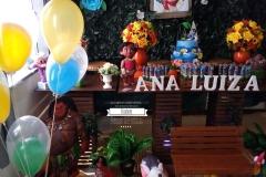 decoracao-infantil-moana-elizabete-festas-11