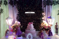 decoracao-infantil-rapunzel-elizabete-festas-02